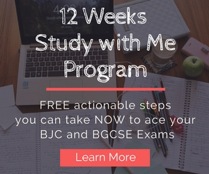 12 weeks study with me website banner 300x250
