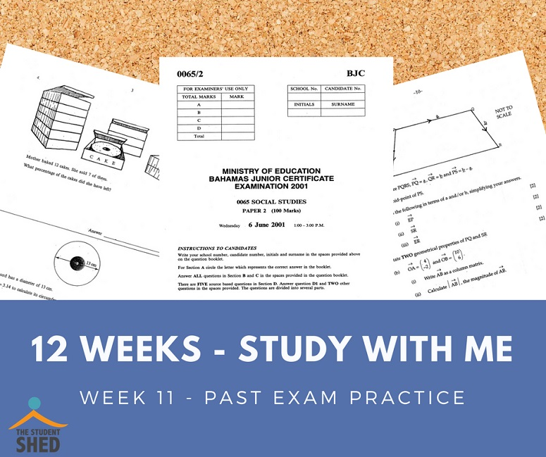12 weeks study with me week 11