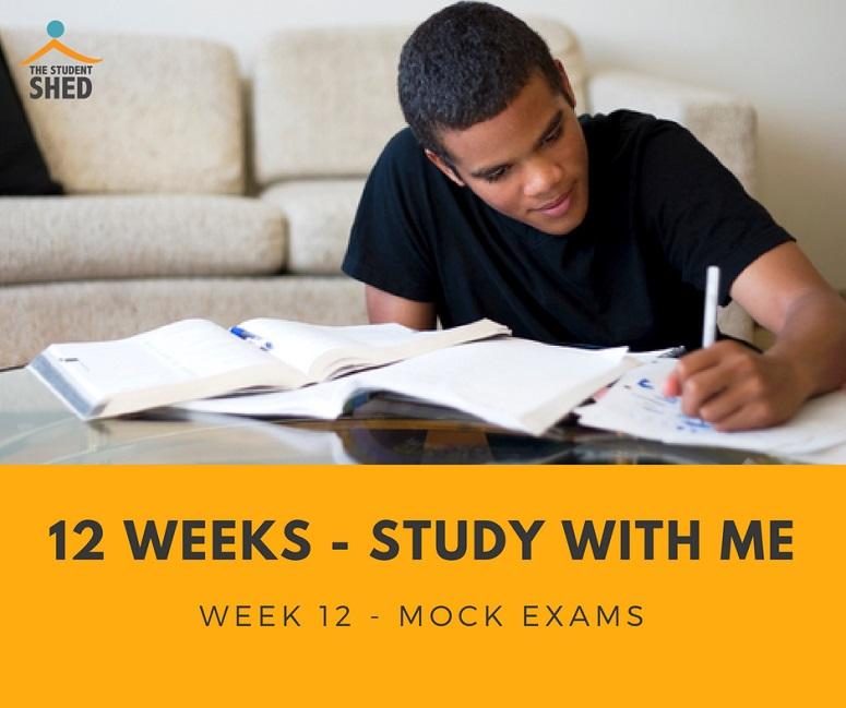 12 weeks study with me week 12