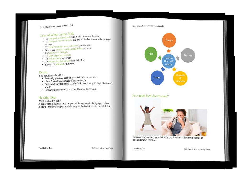 Sample page of study companion