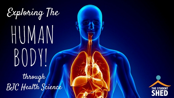 Exploring the Human Body through BJC Health Science (12 Tips for a more effective learning experience)