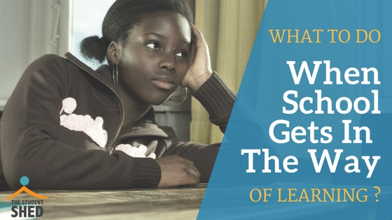 What To Do When School Gets In The Way Of Learning?